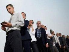 трудоустройство, В этом году в Крыму трудоустроили 30 тыс. человек