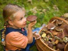 Отравление, В Бахчисарае двухлетний ребенок отравился грибами