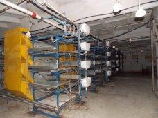 птицефабрика Южная, В Крыму восстанавливают птицефабрику «Южная»