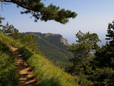 туристический маршрут, Туристы без опасений могут посещать тропы Ялтинского заповедника