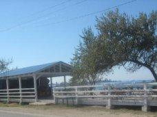 незаконное строительство, В Черноморском районе снесли незаконное кафе на побережье