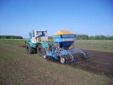 В Кировском районе заканчивают сев зерновых и убирают виноград