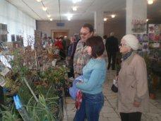 Ярмарка, В Алуште проходит ярмарка для садоводов