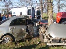 ДТП, В востоке Крыма автомобиль врезался в дерево