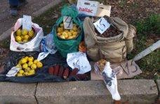 стихийная торговля, стихийная торговля Симферополь, Стихийный рынок, В Симферополе провели рейд по местам стихийной торговли