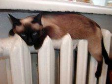 Отопление, В ближайшие дни все регионы Крыма будут обеспечены теплом