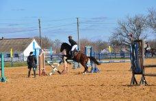 конный пробег, В Крыму устроят конные скачки на кубок премьера АРК