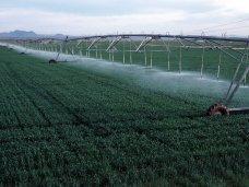 Аграрный министр Крыма призывает инвесторов вкладывать в систему орошения