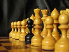 Шахматы, В Крыму проходит шахматный фестиваль