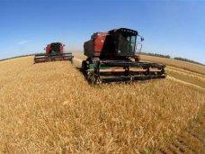зерновые, В Крыму завершена уборка поздних зерновых