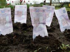 аренда, В Крыму за аренду сельхозпаев выплачено 9,8 млн. грн.