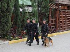 Милиция, Крымские силовики опровергли информацию об отправке спецназа в Киев