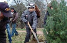 макулатура, В ботаническом саду в Симферополе посадили деревья