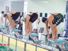 плавание, В Севастополе проходит чемпионат Украины по плаванию