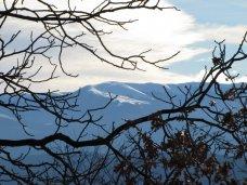 Погода, На неделе в Крыму снег и морозы