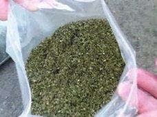 Наркотики, Крымчанин хранил в своем доме полкило конопли