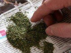 Наркотики, Житель Симферопольского района хранил дома коноплю