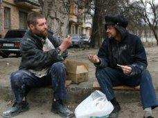 бездомные, В Алуште бездомным помогут социализироваться