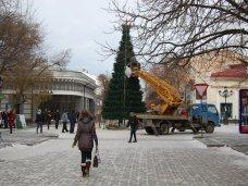 Городская елка, В Симферополе устанавливают еще одну елку