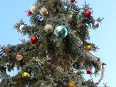 Городская елка, В Симферополе нарядили живую елку