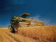 Показатели по сбору урожая в Крыму возросли по сравнению с предыдущим годом