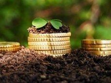 Бюджет, За год агропромышленный комплекс Крыма принес в бюджет 25% средств