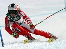 Зимний отдых, В Крыму создана Ассоциация зимних видов спорта