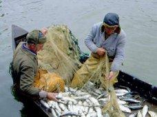 Браконьерство, В Крыму за год поймали более 100 браконьеров