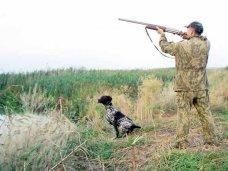 Охотничьи угодья, В Крыму под охотугодьями занято более 2 млн. га земли
