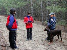 Кинологи, В Севастополе провели аттестацию собак-спасателей