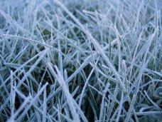 Погода, На неделе в Крым придет зима