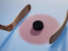 Хоккей, В Симферополе проведут хоккейный матч