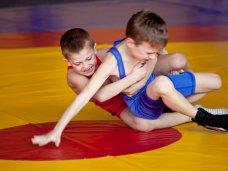 Единоборства, В Севастополе проходит турнир по вольной борьбе