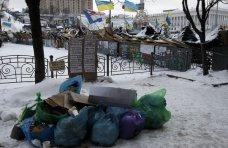 политическая ситуация в Украине, В Мариинском парке в Киеве участники акций протеста рубят деревья