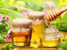Ярмарка, В Алуште до мая будут продавать мед
