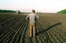 Земля, В Крыму предложили разрешить аренду земли личных крестьянских хозяйств