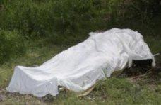 Происшествие, В школе Симферопольского района нашли тело погибшей девочки
