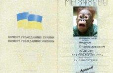 Мошенничество, В Крыму мошенник пытался получить кредит по поддельному паспорту