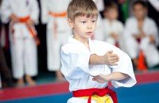 Единоборства, В Севастополе прошел чемпионат по каратэ-до