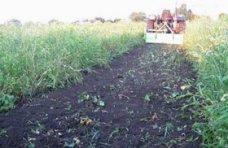 Земля, За год в Крыму восстановлено 13,8 га поврежденных земель