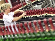 В Крыму презентовали инвестпроект по созданию винодельческого производства