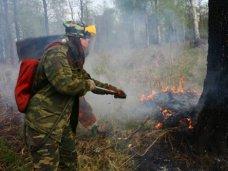 В заповеднике Ялты реализуют проект по тушению лесных пожаров