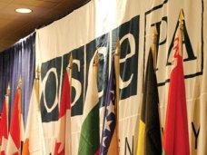 Страны-члены ОБСЕ выступили за мирное урегулирование ситуации в Крыму