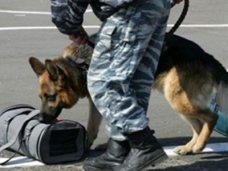Служба безопасности Крыма предупреждает о возможности террористических актов