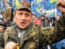В Крыму разработают план мероприятий по пресечению деятельности профашистских организаций