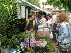 В Алуште пройдет выставка-ярмарка «Зеленый мир»