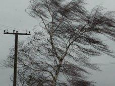 В Крыму два дня будет дуть сильный ветер