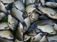 В Джанкойском районе задержали браконьера с карасями