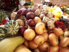 В Ялте проведут сельскохозяйственную ярмарку