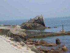 В Алупке из моря выловили тело мужчины